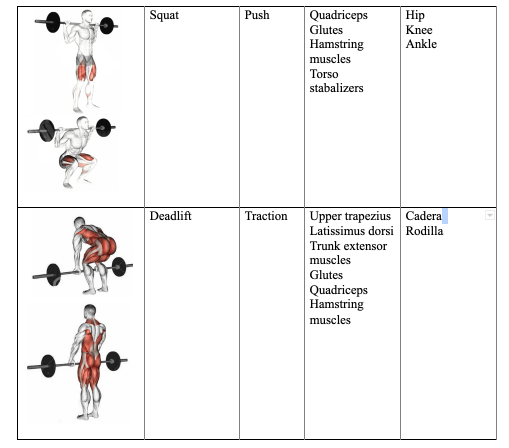 5-exercises-to-increase-muscle-size